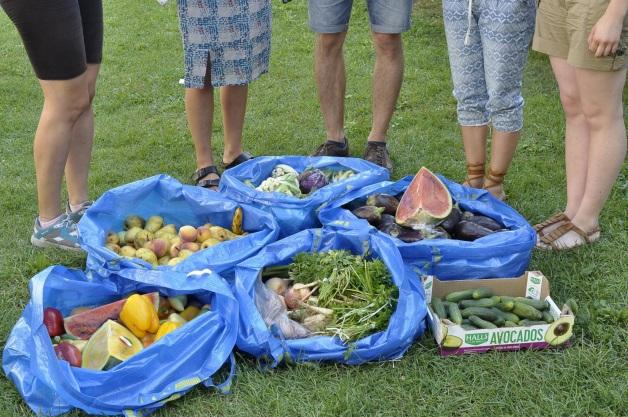 gather, distribute and receive surplus food easily